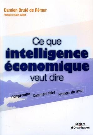 """Damien Bruté de Rémur: """"les actifs d'entreprise sont constitués à 87% d'informations"""""""