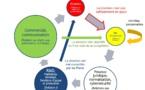 Le modèle des 5 énergies taoïstes