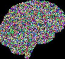 L'intelligence artificielle dans tous ses états